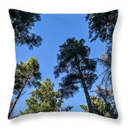 Treetops Throw Pillow