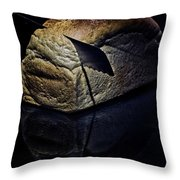 Trenchant Experience Throw Pillow