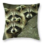 Tres Banditos Throw Pillow