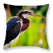 Tri Color At Sunset Throw Pillow