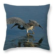 Tri Colored Heron Fishing Throw Pillow