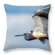 Tri-colored Heron In Flight Throw Pillow