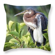 Tri-colored Heron On Guard  Throw Pillow