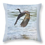 Tri Colored Heron Over The Pond Throw Pillow