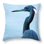 Tri Colored Pose Throw Pillow
