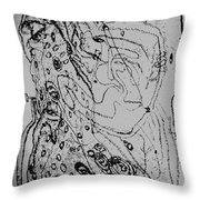 Trial Of The Lamb Throw Pillow