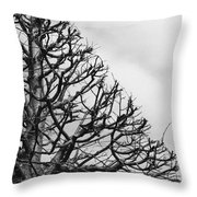 Triangle Tree Throw Pillow