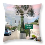Tribute To Columbia Sc Throw Pillow
