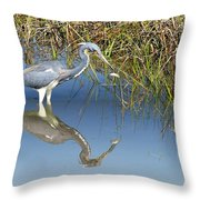 Tricolor Reflection Throw Pillow