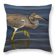 Tricolored Heron 1 Throw Pillow