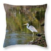 Tricolored Heron Fishing Throw Pillow