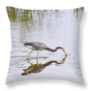 Tricolored Heron Grabs A Bite Throw Pillow