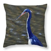 Tricolored Heron Pose Throw Pillow