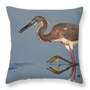 Tricolored Heron Stepping Throw Pillow
