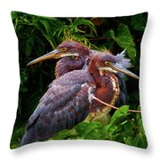 Tricolored Siblings Throw Pillow