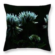 Trifolium Montanum Throw Pillow