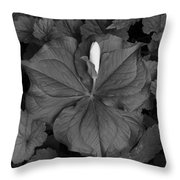 Trillium Bud Bw Throw Pillow
