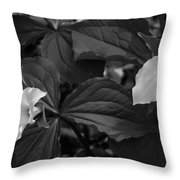Trillium Bw Throw Pillow