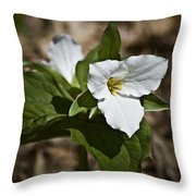 Trillium Grandiflorum Throw Pillow