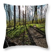 Trillium Trail Throw Pillow