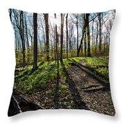Trillium Trail Throw Pillow by Matt Molloy