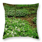 Trillium Woods Iv Throw Pillow