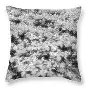 Trilliums On The Forest Floor Bw Throw Pillow