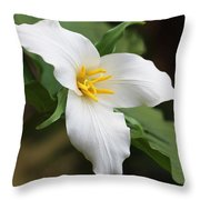 Trillum Wild Flower  Throw Pillow