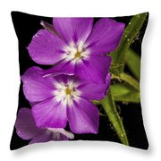 Trio In Purple Throw Pillow