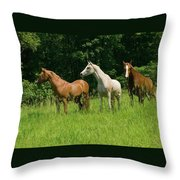 Trio In Spring Throw Pillow