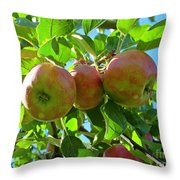 Trio Of Apples Throw Pillow