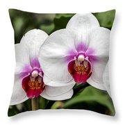 Trio Of Beautiful Flowers Throw Pillow