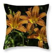 Trio Of Orange Tiger Lilies Throw Pillow