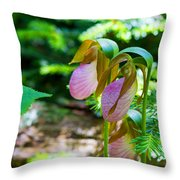 Trio Of Slippers Throw Pillow
