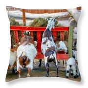 Trip Of Goats At Feeding Time Throw Pillow