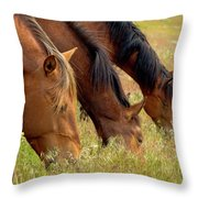Triple Mustang Treat Throw Pillow