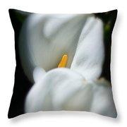 Triple Play Throw Pillow
