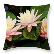 Triplet Water Lilies Throw Pillow
