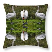 Triplets In Reflection Throw Pillow