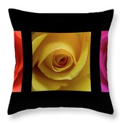 Triptych Roses Throw Pillow