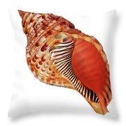 Triton Shell On White Vertical Throw Pillow