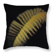Tritons Quill Throw Pillow