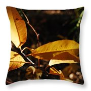 Triune Throw Pillow