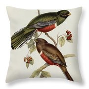 Trogon Collaris Throw Pillow by John Gould