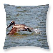 Trolling For Fish Throw Pillow