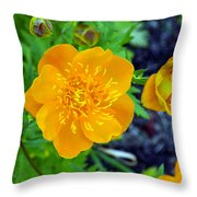 Trollius Blossom Throw Pillow