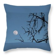 Trompe L Oeil Moon Throw Pillow