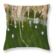 Tropical Bali Rain Throw Pillow