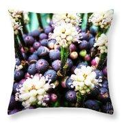 Tropical Berries 3 Throw Pillow