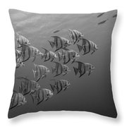 Tropical Black And White Throw Pillow